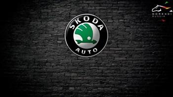 Skoda Octavia 2.0 TFSi RS (200 л.с.) - photo 4803