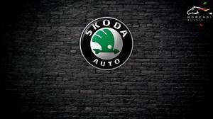 Skoda Fabia 1.4 TSi RS (CAVE) (180 л.с.)